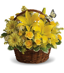 Basket Full of Wishes from McIntire Florist in Fulton, Missouri