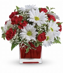 Red And White Delight by Teleflora from McIntire Florist in Fulton, Missouri