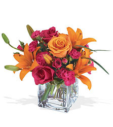 Teleflora's Uniquely Chic Bouquet from McIntire Florist in Fulton, Missouri