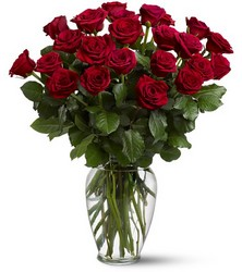 Two Dozen Red Roses from McIntire Florist in Fulton, Missouri