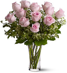 A Dozen Pink Roses from McIntire Florist in Fulton, Missouri